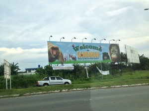 Welcome to Borneo