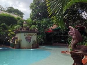 Hotel kert és medence
